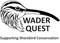 Wader Quest