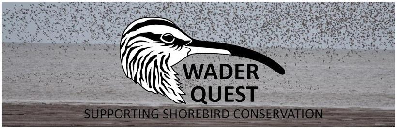 Community Wader Conservation