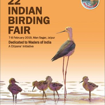 22nd Indian Birding Fair dedicated to waders.
